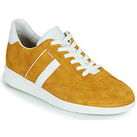 Παπούτσια Άνδρας Χαμηλά Sneakers Lloyd BURT Moutarde