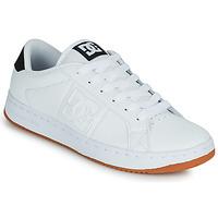 Παπούτσια Άνδρας Skate Παπούτσια DC Shoes STRIKER Άσπρο / Black