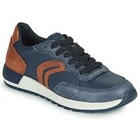 Παπούτσια Αγόρι Χαμηλά Sneakers Geox J ALBEN BOY Μπλέ