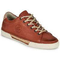 Παπούτσια Γυναίκα Χαμηλά Sneakers Pataugas LUCIA/N F2G  terracotta