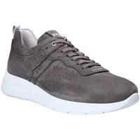 Παπούτσια Άνδρας Χαμηλά Sneakers Nero Giardini P900920U Γκρί