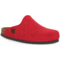 Παπούτσια Σαμπό Bioline RIBES MERINOS Rosso