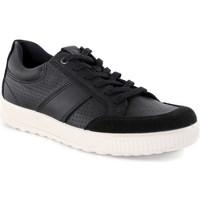 Παπούτσια Άνδρας Χαμηλά Sneakers Ecco 50156451052 Μαύρος