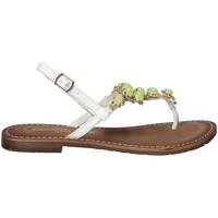 Παπούτσια Γυναίκα Σαγιονάρες Gardini 1108754 λευκό