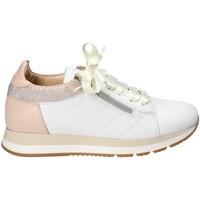 Παπούτσια Γυναίκα Χαμηλά Sneakers Exton E18 λευκό