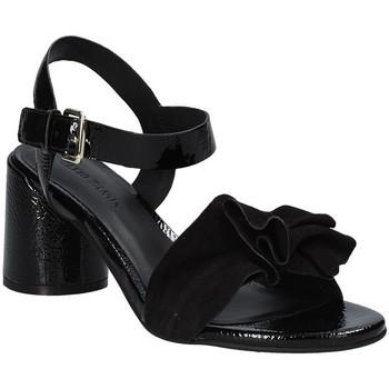 Παπούτσια Γυναίκα Σανδάλια / Πέδιλα Elvio Zanon EJ5605P.L Μαύρος