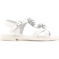 Παπούτσια Παιδί Σανδάλια / Πέδιλα Lulu LT080056L λευκό