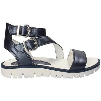 Παπούτσια Παιδί Σανδάλια / Πέδιλα Primigi 1382333 Μπλε