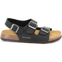 Παπούτσια Άνδρας Σανδάλια / Πέδιλα Grunland SB3645 Μαύρος