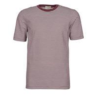 Υφασμάτινα Άνδρας T-shirt με κοντά μανίκια Scotch & Soda 160847 Red / Άσπρο