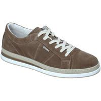 Παπούτσια Άνδρας Χαμηλά Sneakers IgI&CO 3138322 Πράσινος