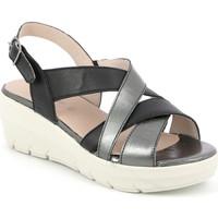 Παπούτσια Γυναίκα Σανδάλια / Πέδιλα Grunland SA1877 Μαύρος