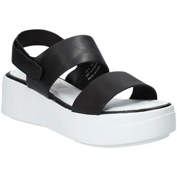 Παπούτσια Γυναίκα Σανδάλια / Πέδιλα Impronte IL91541A Μαύρος