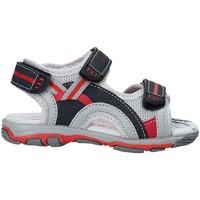 Παπούτσια Παιδί Σανδάλια / Πέδιλα U.s. Golf S19-SUK466 Μπλε