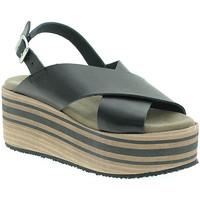 Παπούτσια Γυναίκα Σανδάλια / Πέδιλα Pregunta IBH5803 Μαύρος