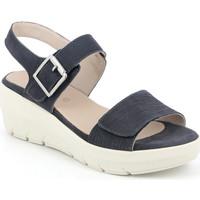 Παπούτσια Γυναίκα Σανδάλια / Πέδιλα Grunland SA1881 Μπλε