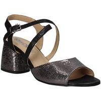 Παπούτσια Γυναίκα Σανδάλια / Πέδιλα IgI&CO 3186200 Μαύρος
