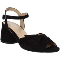 Παπούτσια Γυναίκα Σανδάλια / Πέδιλα IgI&CO 3186533 Μαύρος