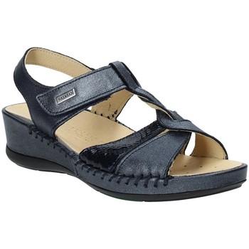 Παπούτσια Γυναίκα Σανδάλια / Πέδιλα Susimoda 2379-03 Μπλε