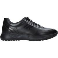 Παπούτσια Γυναίκα Χαμηλά Sneakers Lumberjack SW70312 001 B01 Μαύρος
