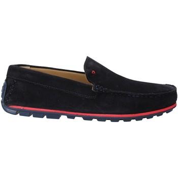 Παπούτσια Άνδρας Μοκασσίνια Rogers 701 Μπλε