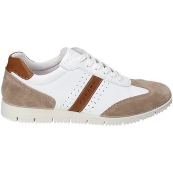 Παπούτσια Άνδρας Χαμηλά Sneakers IgI&CO 3121811 λευκό
