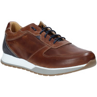 Παπούτσια Άνδρας Χαμηλά Sneakers Rogers 5068 καφέ