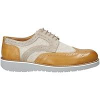 Παπούτσια Άνδρας Derby Exton 5105 Μπεζ