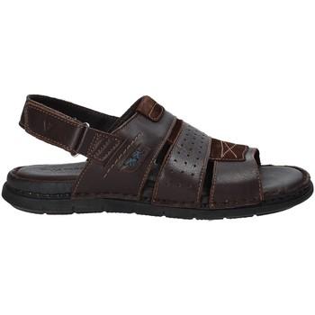 Παπούτσια Άνδρας Σανδάλια / Πέδιλα Valleverde 20831 καφέ