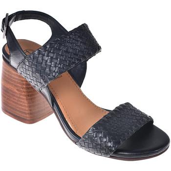 Παπούτσια Γυναίκα Σανδάλια / Πέδιλα Onyx S19-SOX527 Μαύρος