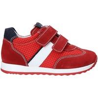 Παπούτσια Παιδί Χαμηλά Sneakers Nero Giardini P923451M το κόκκινο