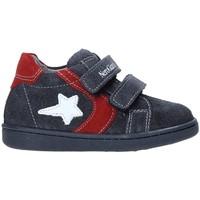 Παπούτσια Παιδί Χαμηλά Sneakers NeroGiardini A919000M Γκρί