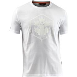 Υφασμάτινα Άνδρας T-shirt με κοντά μανίκια Lumberjack CM60343 005 514 λευκό