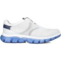 Παπούτσια Άνδρας Χαμηλά Sneakers CallagHan 42700 λευκό