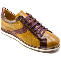 Παπούτσια Άνδρας Χαμηλά Sneakers Exton 831 καφέ