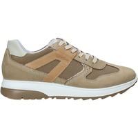 Παπούτσια Άνδρας Χαμηλά Sneakers IgI&CO 5129633 Μπεζ