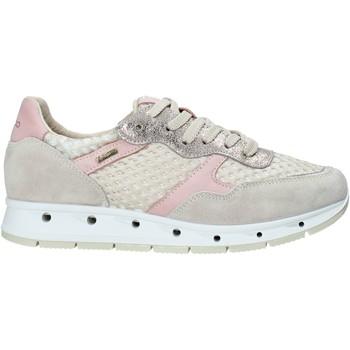 Xαμηλά Sneakers IgI CO 5161366