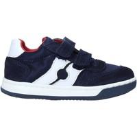 Παπούτσια Παιδί Sneakers Falcotto 2014666 01 Μπλε