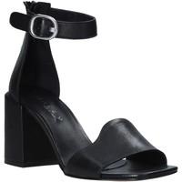 Παπούτσια Γυναίκα Σανδάλια / Πέδιλα Mally 6866 Μαύρος