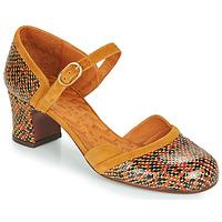 Παπούτσια Γυναίκα Γόβες Chie Mihara TROMPETA Brown