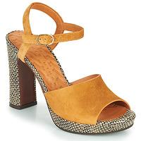 Παπούτσια Γυναίκα Σανδάλια / Πέδιλα Chie Mihara CASSETTE Brown