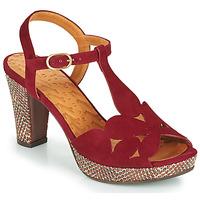 Παπούτσια Γυναίκα Σανδάλια / Πέδιλα Chie Mihara EGEO Bordeaux