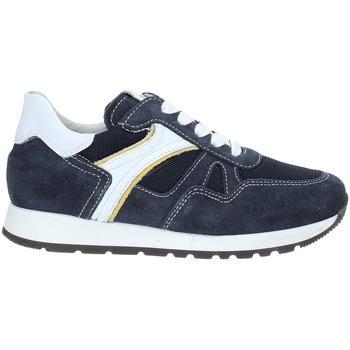 Παπούτσια Παιδί Χαμηλά Sneakers NeroGiardini P933590M Μπλε