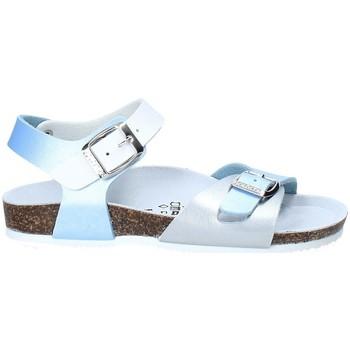 Παπούτσια Παιδί Σανδάλια / Πέδιλα Gold Star 8846D Μπλε