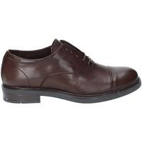 Παπούτσια Άνδρας Richelieu Rogers 1236 Γκρί