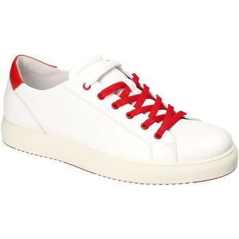 Παπούτσια Άνδρας Χαμηλά Sneakers IgI&CO 3132700 λευκό