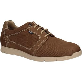 Παπούτσια Άνδρας Derby Baerchi 5080 καφέ