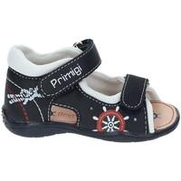 Παπούτσια Κορίτσι Σπορ σανδάλια Primigi 7006 Μπλε