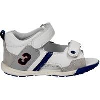 Παπούτσια Παιδί Σανδάλια / Πέδιλα Chicco 01057445 λευκό