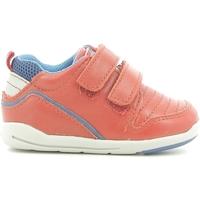 Παπούτσια Παιδί Χαμηλά Sneakers Chicco 01056499000000 το κόκκινο